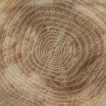 wood-2735496_960_720